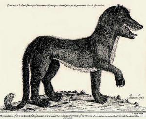 Artist's conception of one of the Beasts of Gévaudan, 18th-century engraving by A.F. of Alençon