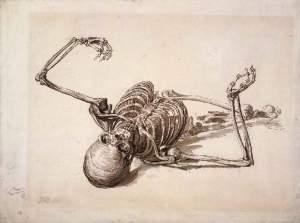 skeleton2