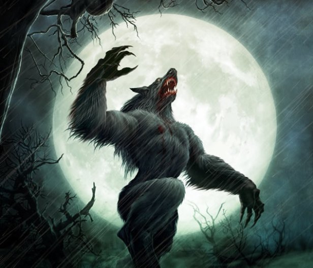 Image result for Werewolves